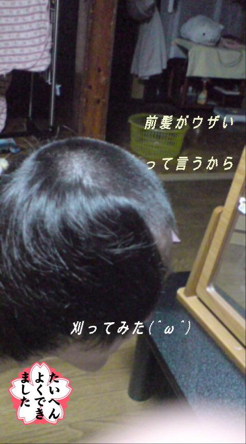 20080507104717.jpg